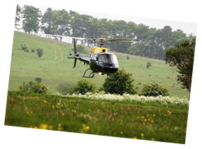 Tururi cu elicopterul