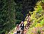 Cadou barbati - Heli biking pentru 2