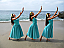 Curs Privat - Initiere in Hula Dance