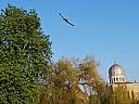 Survol de placere cu avionul  in Oradea