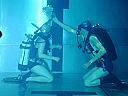 Initiere in scubadiving pentru grupuri