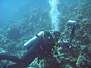 Initiere in scubadiving in Baia Mare pentru 2