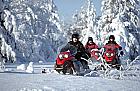 Snowmobil - Experienta in Brasov